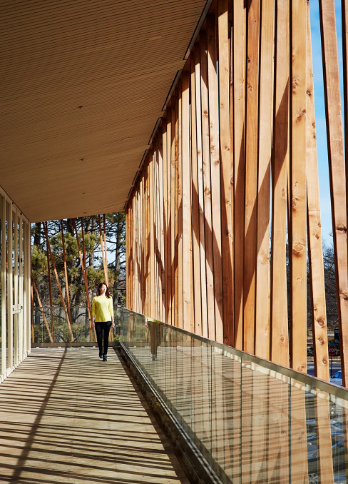 Writers Theatre Wood Canopy, designed by Studio Gang